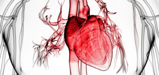 Marijuana Activity May Protect In Chronic Heart Failure