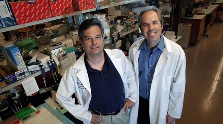 Sean McAllister (right) and CPMC colleague Pierre Desprez have been studying chemicals in marijuana as a treatment for cancer (Photo: Carlos Avila Gonzalez/The Chronicle)