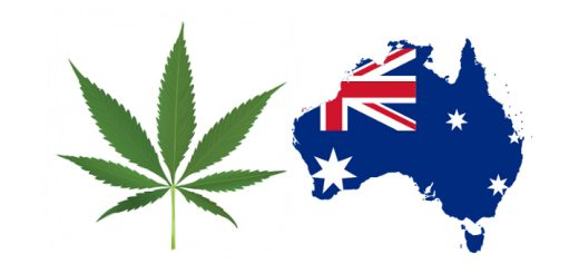Australian Doctors, Experts Join Call For Medical Marijuana