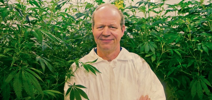 Tjalling Erkelens, CEO of Dutch medical marijuana company Bedrocan BV