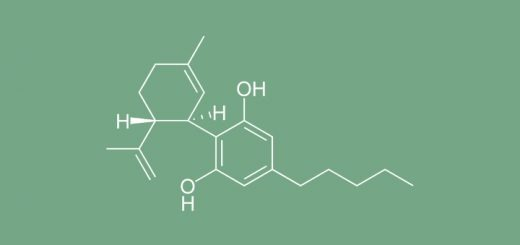 10 Facts About Cannabidiol (CBD)