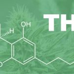 6 Surprising Facts About THC