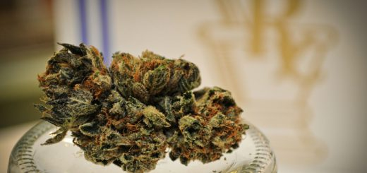 Medical Marijuana Research Is Being Blocked, Scientists Say