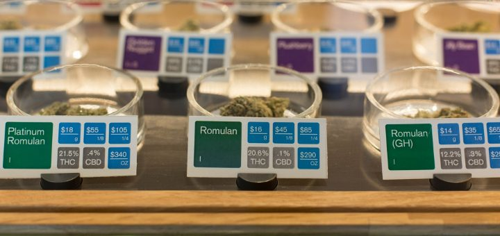 Fiori di Cannabis in mostra in un dispensario California.  (Foto: Sonya Yruel / Drug Policy Alliance)