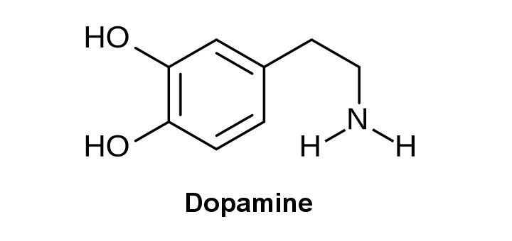 marijuana and dopamine  what u0026 39 s the link