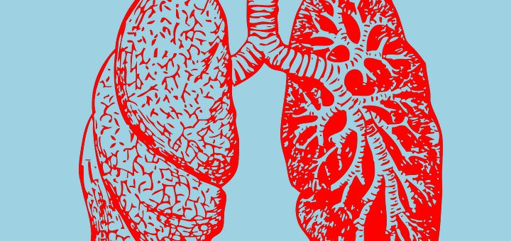 Why Marijuana Doesn't Increase Your Lung Cancer Risk