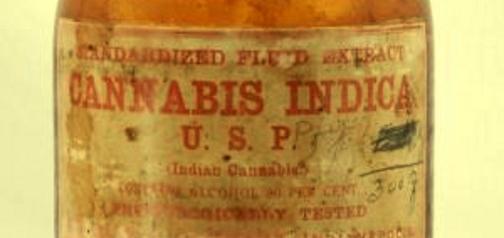 Label of 19th century cannabis extract made by Eli Lilly (Photo: Wikimedia Commons)