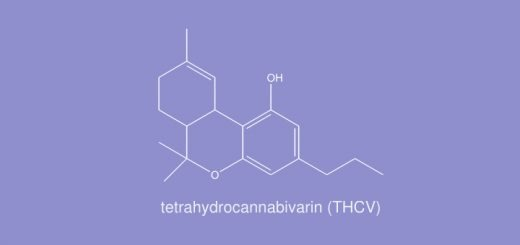 THCV May Affect Your High, Study Finds