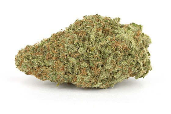 popular-weed-strains-5