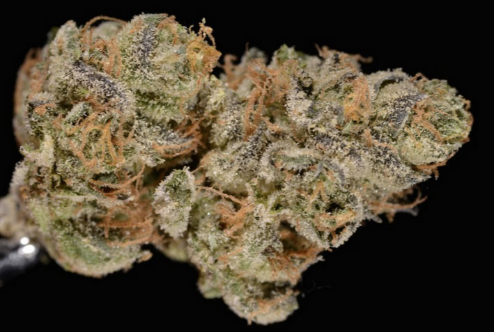 popular-weed-strains