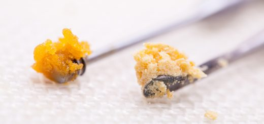 What is Live Resin?