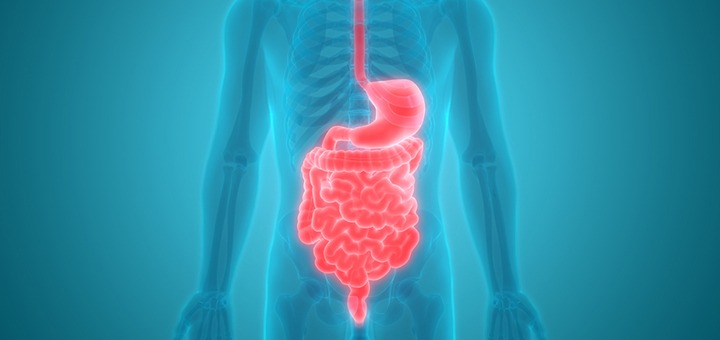 Can Marijuana Help Treat IBD