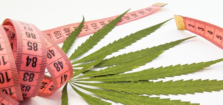 tape measure and cannabis leaf