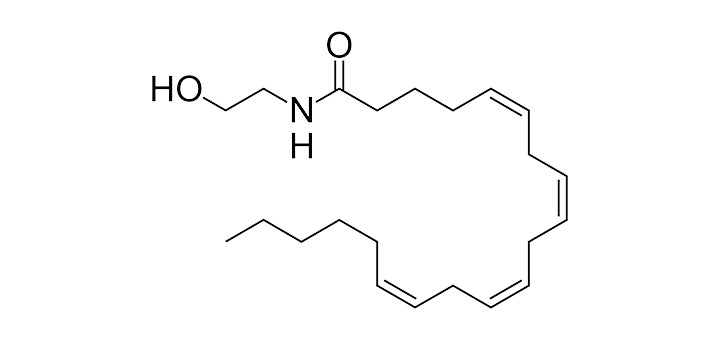 anandamide-structure