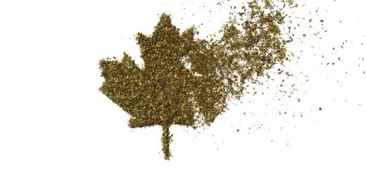 Cannabis demands in Canadian Cannabis industry set to soar after legislation