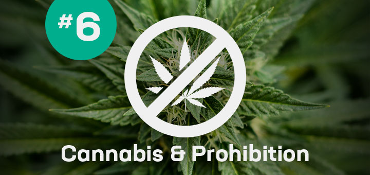 Cannabis and Prohibition