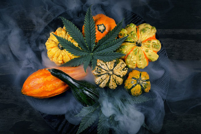Best strains to smoke on Halloween