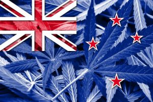 Flying the flag for cannabis law reform